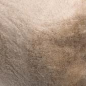 Наматрасник (шоколадный верблюд)