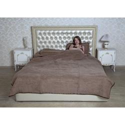 Двухслойное одеяло (шоколадный верблюд)
