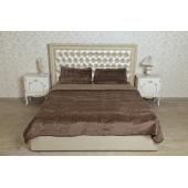 Спальные комплекты с двухслойным одеялом (верблюд  шоколадный)